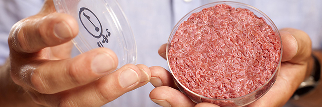 De la viande in-vitro pour l'environnement ?