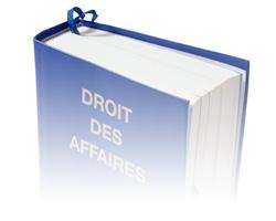 Création d'entreprises en France