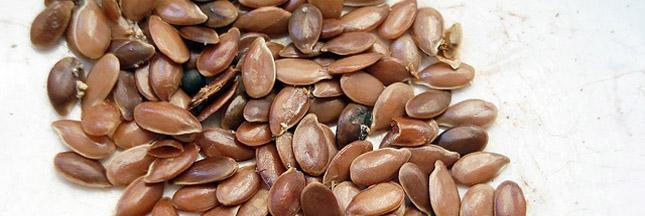 Pourquoi les graines de lin ont la fibre santé